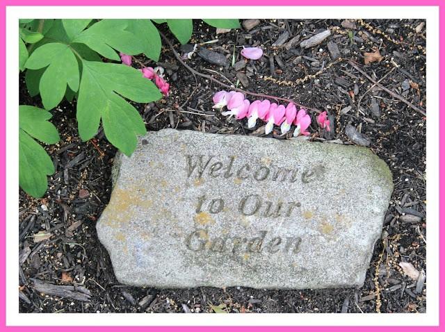 Shaded Garden Plants