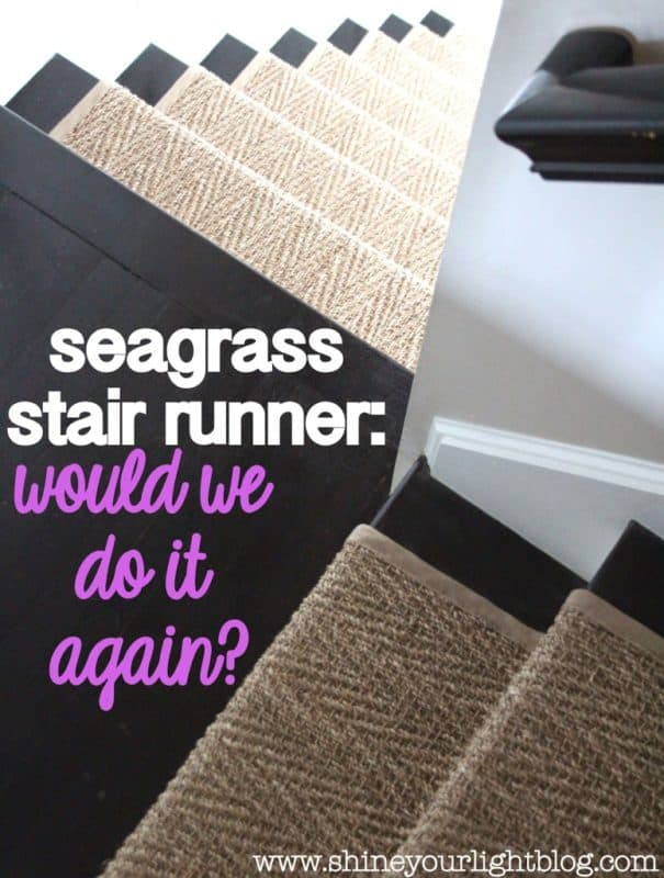 How Seagrass Runner Held Up