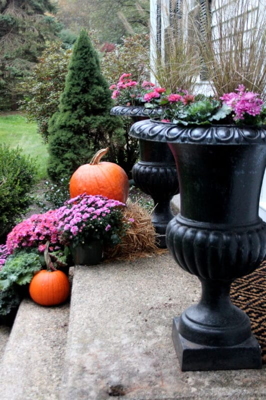 Fall front door on a classic New England colonial, with iron urns