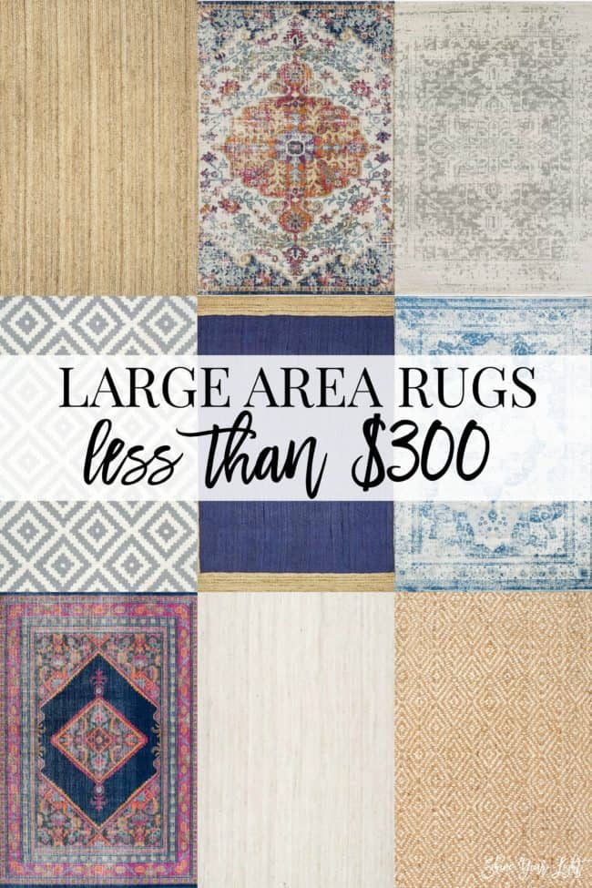 Large area rugs that are less than $300