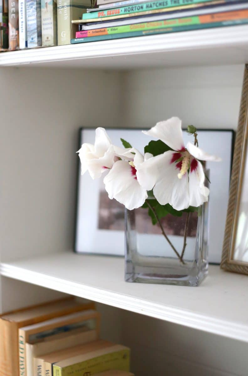 Fresh Rose of Sharon flowers cut from the garden to style a bookcase